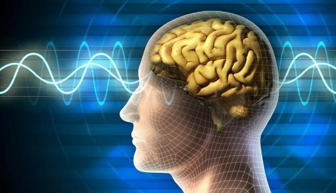 Tubuh Dapat Hidup Lebih Lama Walaupun Otak Telah Mati